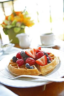 Hawaii, Maui, Balcony, Breakfast fresh fruit waffle and coffee.