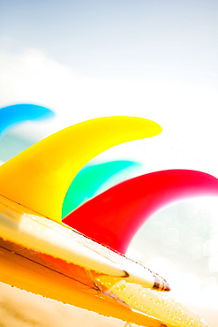 Colorful surfboards fins, bright sunny sky in background.