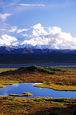 Alaska, Denali National Park, Denali, Tundra pond, Mountains in background.
