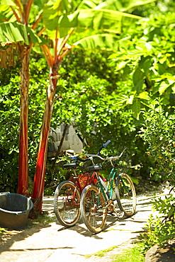 French Polynesia, Tahiti, Maupiti, local bikes parked in driveway.