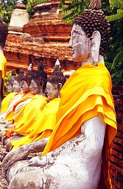 Thailand, Ayuthaya, Wat Yai Chai Monghon, Many Bodhisattva statues