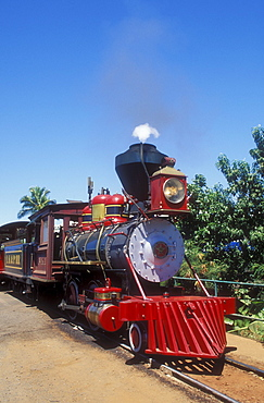 Hawaii, Maui, Lahaina, Kaanapali and Pacific Railroad, the Sugar Cane Train.