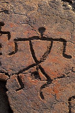 Hawaii, Big Island, South Kohala, Hawaiian petroglyphs, Anaeho'omalu,