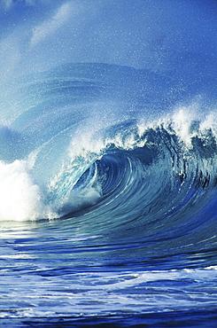 Hawaii, Oahu, Waimea Bay; big wave curling and crashing