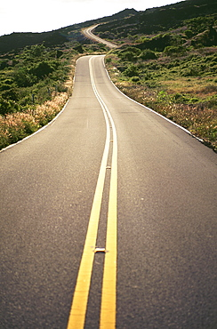 Hawaii, Maui, Country road through rolling hills