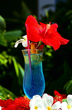 Fiji, The Reef Resort, closeup of blue tropical drink with hibiscus garnish and flowers