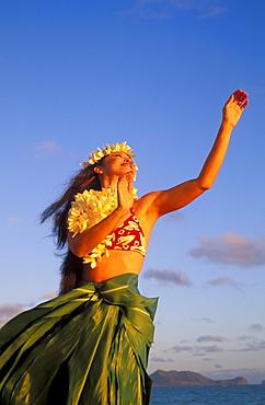 Close-up upward view of hula woman wearing ti-leaf skirt, plumeria haku and lei blue sky ocean