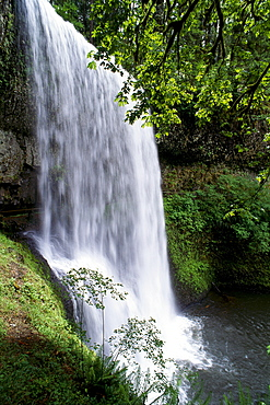 Oregon, Silver Falls State Park, Lower South Falls, B1648