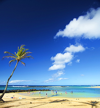 Tourists playing in the shallow water along the coast of the Island of Hawaii; Haene, Island of Hawaii, Hawaii, United States of America