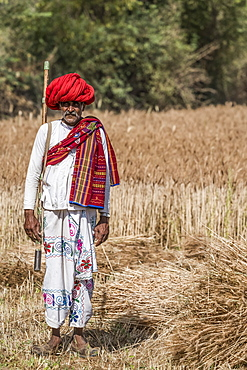 Local man keeping guard over the fields in Northern India, Rajasthan, India