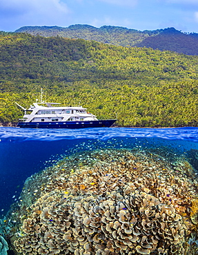 A split scene with a shallow hard coral reef below water and island above with the live aboard dive vessel Infiniti, Philippines