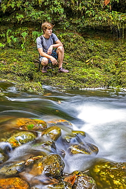 A young man crouches next to a small stream running through a forest in Upcountry Maui, Maui, Hawaii, United States of America