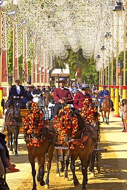 Horse and carriage, Annual Horse Fair, Jerez de la Frontera, Cadiz Province, Andalusia, Spain, Europe