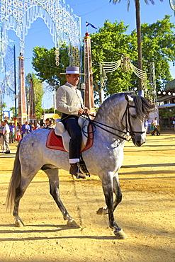 Spanish horse rider in traditional dress at annual Horse Fair, Jerez de la Frontera, Cadiz Province, Andalusia, Spain, Europe