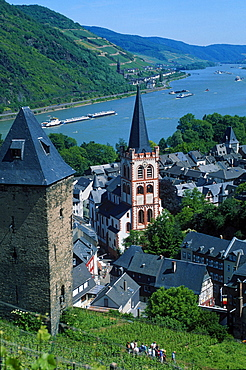 View on Bacharach with Peters church and river Rhine, Rhineland-Palatinate, Germany / UNESCO World Cultural Heritage Mittelrheintal