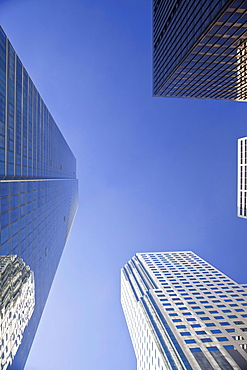Skyscrapers, worm's-eye view, Financial District, San Francisco, California, USA