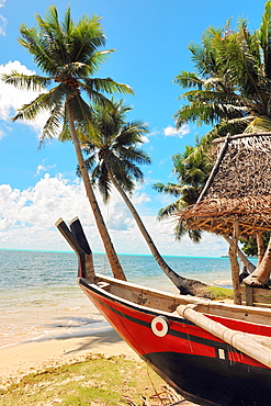 Traditional canoe at beach under palm trees, Yap, Micronesia, western pacific