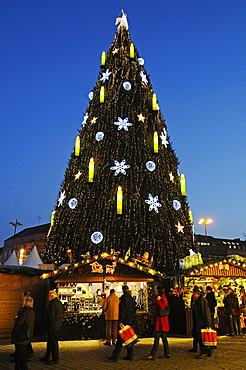 christmas market, fair, christmas tree, Dortmund, North Rhine-Westphalia, Germany