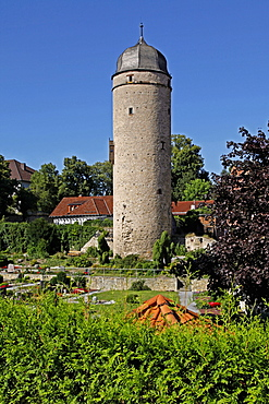 Saxon tower, Sackturm, built 1443, Warburg, district of Hoxter, North Rhine-Westphalia, Germany / Höxter