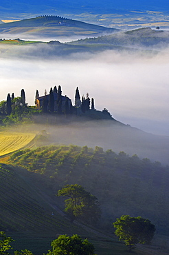 Val d'Orcia, Orcia Valley, Morning fog, The Belvedere at dawn, UNESCO World Heritage Site, San Quirico d'Orcia, Siena Province, Tuscany, Tuscany landscape, Italy, Europe
