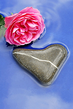 Rose and heart-shaped stone