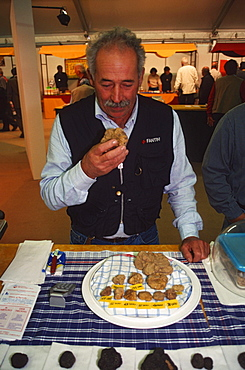 Man smelling at Truffle, Alba, Piemont, Italy