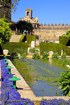 Pond, garden of Alcazar de los Reyes Cristianos, Cordoba, Andalusia, Spain / Alcazar of the Christian Monarchs, Alcazar of the Catholic Kings