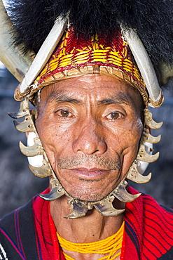 Naga tribal man in traditional outfit, Kisima Nagaland Hornbill festival, Kohima, Nagaland, India, Asia