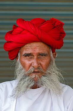 Indian man, member of the Rabari tribe, with a red turban, Bera, Rajasthan, India, Asia