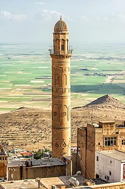 Sehidiye mosque minaret, Mardin, Anatolia, Eastern Turkey, Asia Minor, Eurasia