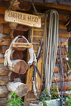 Engholm Husky Centre, Karajok, Finnmark, Norway, Scandinavia, Europe