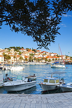 Hvar's picturesque harbour, Stari Grad (Old Town), Hvar, Dalmatia, Croatia, Europe - 1158-483