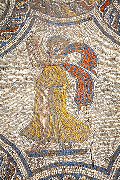 Mosaic detail from the House of Dionysus, Volubilis, UNESCO World Heritage Site, Morocco, North Africa, Africa