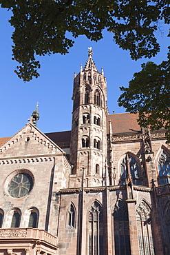 Cathedral, Freiburg im Breisgau, Black Forest, Baden Wurttemberg, Germany, Europe