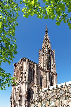 Strasbourg Cathedral Notre Dame, UNESCO World Heritage Site, Strasbourg, Alsace, France, Europe