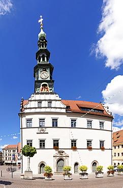 Townhall at market square, Pirna, Saxon Switzerland, Saxony, Germany, Europe