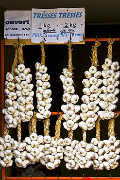 Plaits of garlic for sale, Bastide d'Armagnac, France