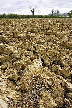 Earth of ploughed field, Wyck Rissington, Gloucestershire, United Kingdom