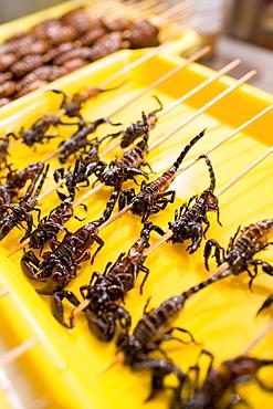Deep fried scorpions for sale in the Night Market, Wangfujing Street, Beijing, China
