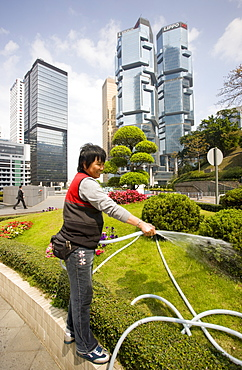 Gardener watering grass in the financial district by the Lippo Centre, Hong Kong, China