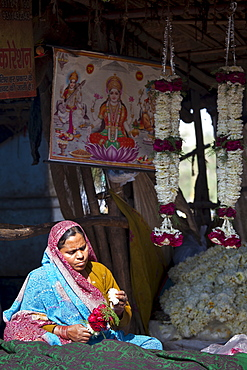 Indian woman at work stringing garlands at Mehrauli Flower Market, New Delhi, India