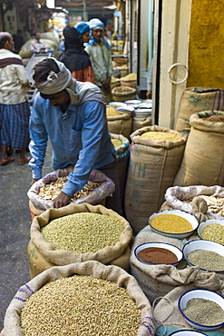 Stallholder with coriander seeds and dried mango skins on sale at Khari Baoli spice and dried foods market, Old Delhi, India