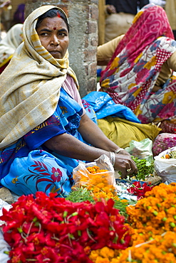 Woman selling flowers and herbs for temple offerings by The Golden Temple during Festival of Shivaratri in holy city of Varanasi, India