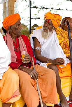 Hindu priests at Holi festival of 76th Maharana of Mewar, His Highness, Shriji Arvind Singh Mewar of Udaipur, at the City Palace, Rajasthan, India