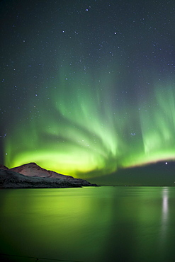 The Aurora Borealis spectacular Northern Lights and Venus star at Grotfjord, Kvaloya island, Tromso in the Arctic Circle, Northern Norway