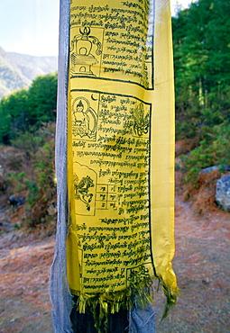 Buddhist prayer flag on mountain path to Tak Tsang Monastery, Bhutan