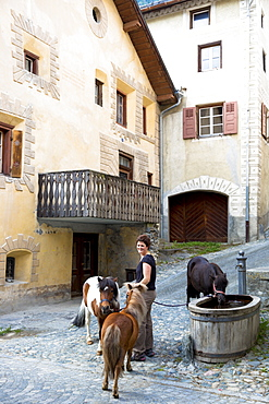 Ponies drink from water trough in Engadine Valley village of Ardez, Switzerland, Europe