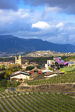 Marques de Riscal Bodega winery, vines and Hotel Marques de Riscal, designed by Frank O Gehry at Elciego in Rioja-Alavesa, Basque Country, Euskadi, Spain, Europe