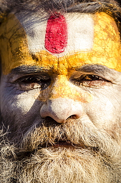 A local sadhu, or baba, at the Shiva Shrines, Pashupatinath, Nepal, Asia