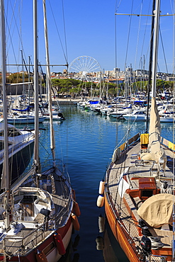 Vieux Port with many yachts, big wheel, Antibes, from Bastion St.-Jaume, Antibes, French Riviera, Cote d'Azur, Provence, France, Europe